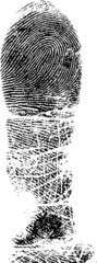 Full Fingerprint 3