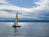 Sailboat sailing in the water reflecting sunlight poster