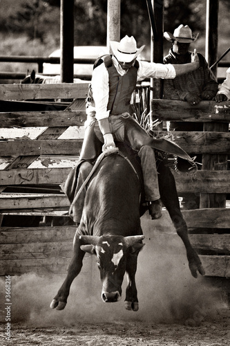 rodeo cowboy bull riding - converted with added grain