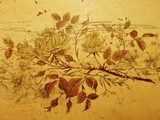 Grungy vintage roses, old damaged drawing, antique furniture poster