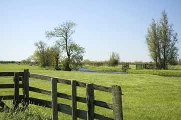 Country fence with grassland in the back on a nice sunny day.