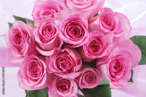 One dozen pink roses in a pink wrap