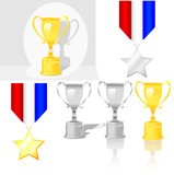 Shiny trophy, shadwow &  reflection styles. Gold Silver medal. poster