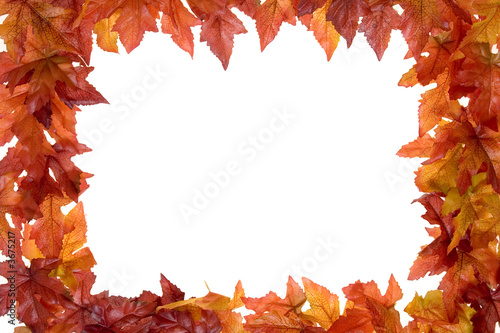 fall leaves frame isolated on a white background
