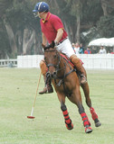 Polo Player & Pony