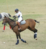 Polo Player Charging poster