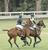 Two Polo Players Racing