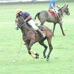 Polo Player Hitting Ball