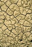 desert soil poster