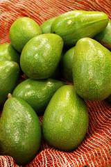 grupo de aguacates avocado palta