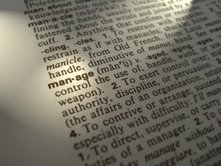 Dictionary Manage business term / word