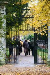 Clare college back door at University of Cambridge