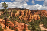 A majestic Red Canyon from red clay in USA poster