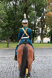 The cavalryman on parade in Kremlin, Russia poster