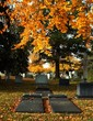 Cemetery in Autumn with headstones