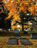 Cemetery in Autumn with headstones poster