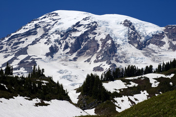 Beautiful Mount Rainier in July
