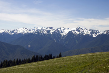 Hurricane Ridge at the Olympic National Park, Washington, USA