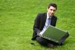 geschäftiger Anwalt mit Laptop auf Wiese