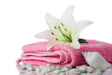 spa flower  towel sea shell on white