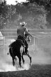 cowboy with lasso on horse at a rodeo, added grain