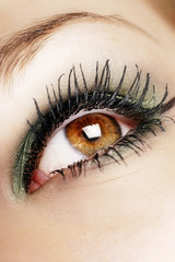 beautiful eye with makeup