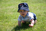 Little Boy Crawling in the grass poster