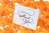Thank you card on a bright autumn background of leaves poster
