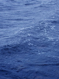 close up of a blue ocean sea swell poster