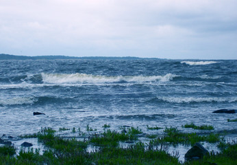 stormy sea off the coast of Torekov in Sweden