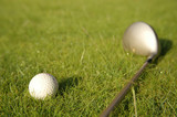 Golf ball and stick on the green grass field with moisture. poster