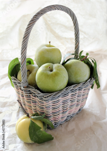 fresh green plums in a pastel basket
