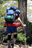 hiker,backpacker poster