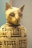Mummified cat mummy from Egypt poster