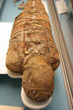 Egyptian Mummy poster
