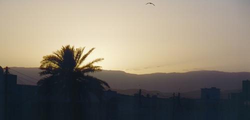 Sonnenuntergang bei Sur/Oman