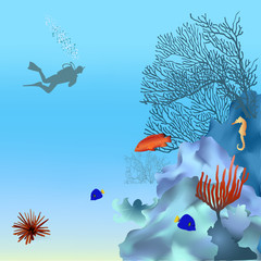 Coral reef with fish and diver.