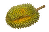 Single whole durian isolated on white background.. poster