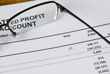 Focus on the profit statement of a financial report.. poster