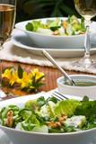 Sharp and sweet green organic salad  poster