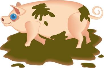 muddy pig