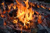 Close up of an campfire at night poster
