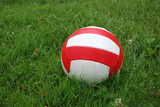Sport ball over the grass poster