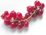 cluster of red currant poster