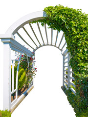 White arch decorated with ivy and flowers, isolated over white