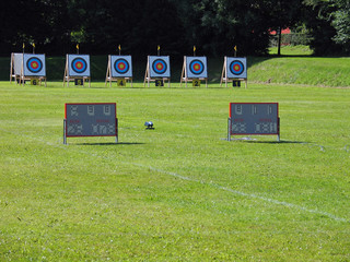 Archery targets and electronic results display