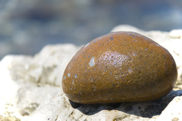 Greater wet yellow  pebble on sea I protect