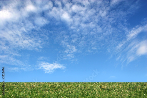 Cloudy sky and field of grass