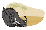 Warthog with safari background poster