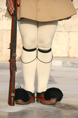 detail of a traditional presidential guard